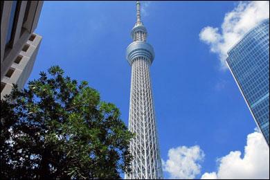東京スカイツリーの写真